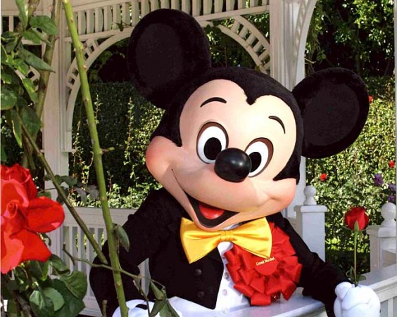 Mickey Mouse | Agraria