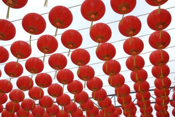 Chinese lanterns | AGRARIA